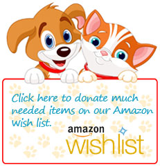 Donate via the Pet Samaritans Amazon Wishlist