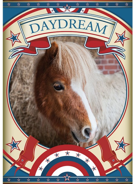 Daydream Mini Pony