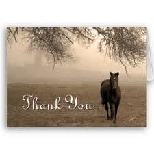 horses - thank you