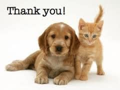 thank you - dog and cat