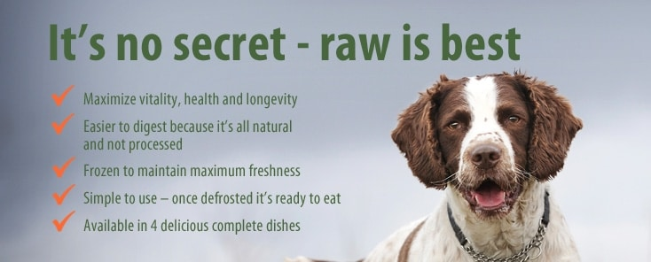 Natures Diet Raw Dog Food