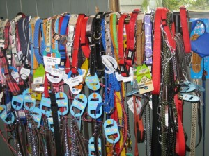 dogs - collars and leads