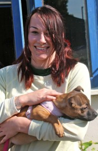 puppy - sunny with jodie