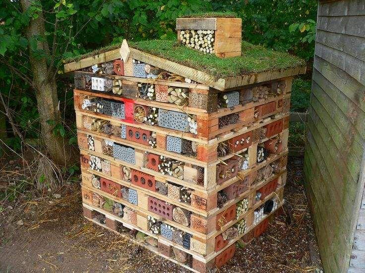 Ultimate Bug House