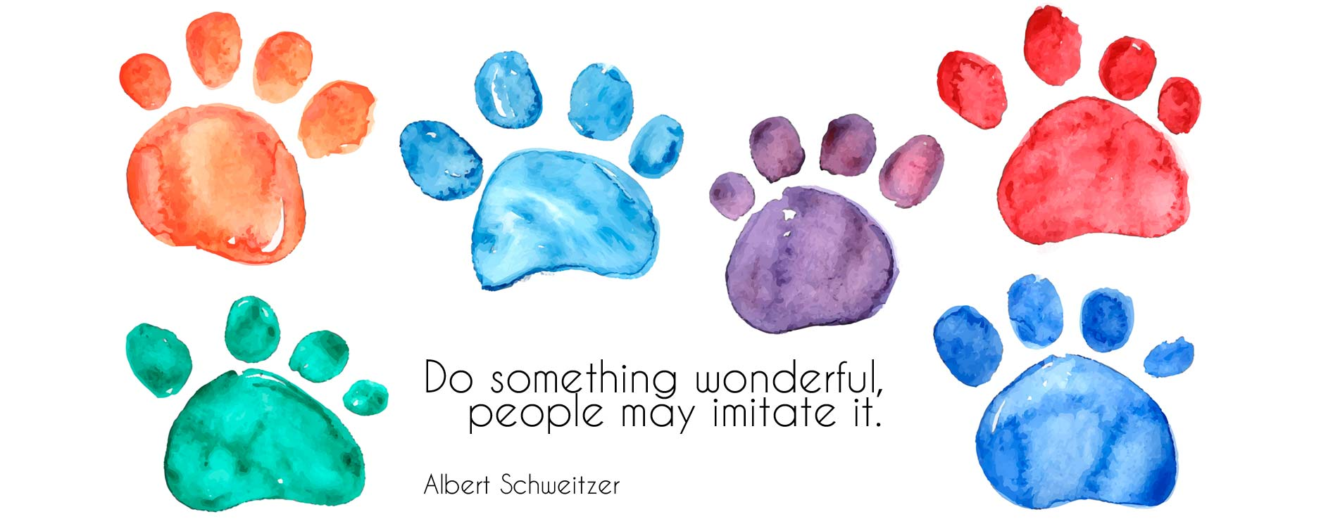 Albert Schweitzer Pet Quote