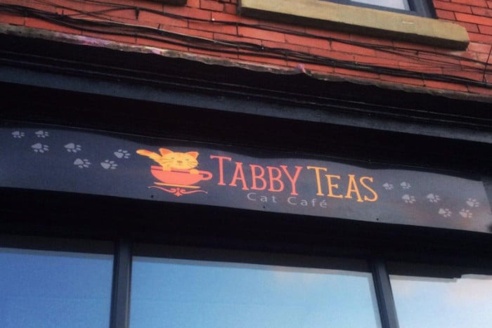 Good Luck to Tabby Teas in Sheffield