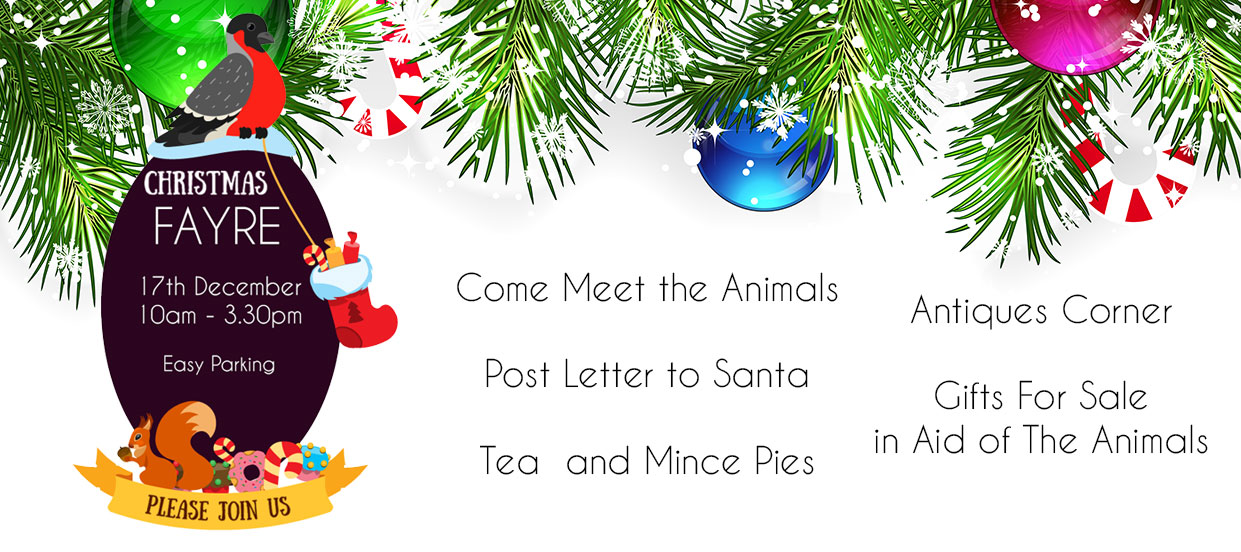 Christmas Fayre at the Pet Samaritans