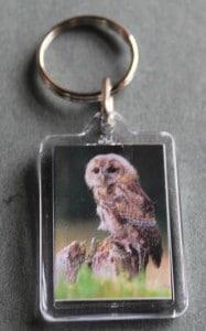 keyrings - owl