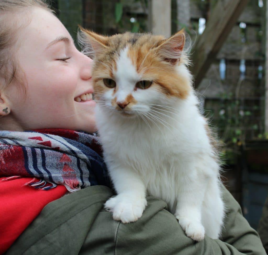 Cat with Pet Samaritan