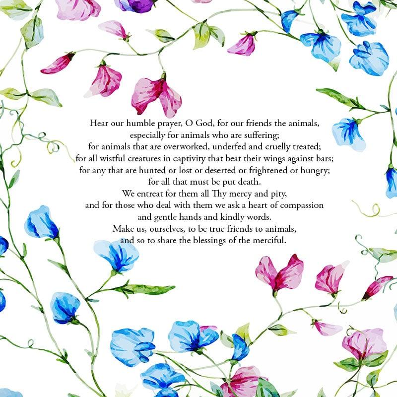 Prayer for Animals – Poem for Sunday