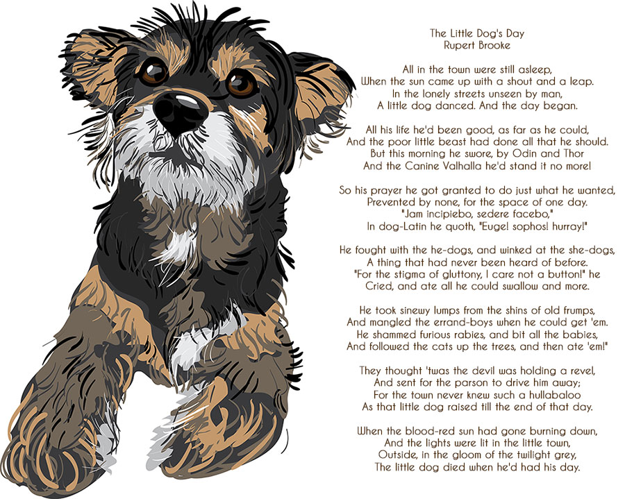 Poem for Sunday - The Little Dogs Day - Pet Samaritans