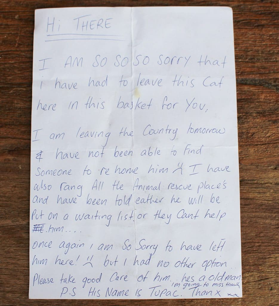 Cat letter to animal sanctuary