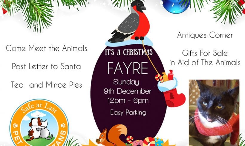 Christmas Fair 9th December at the Animal Sanctuary