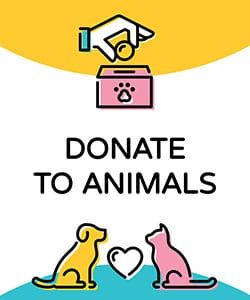 donate to the animals