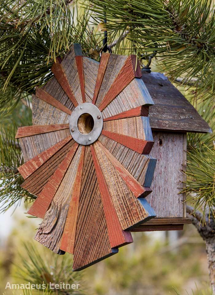 elegant birdhouse design