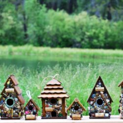 Five amazing birdhouses for Wildlife
