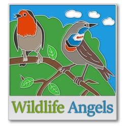 Wildlife Angels Enamel Pins