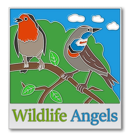 Wildlife Angels Enamel Pins
